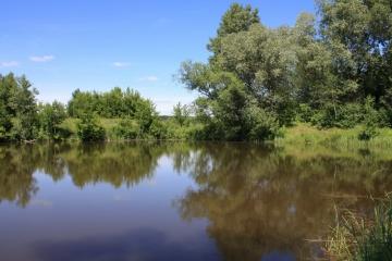 Алтай-Лето-2010