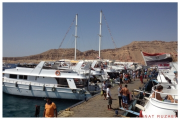 Египет III. Дайвинг