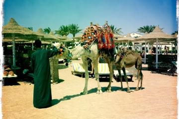 Египет III. Intro