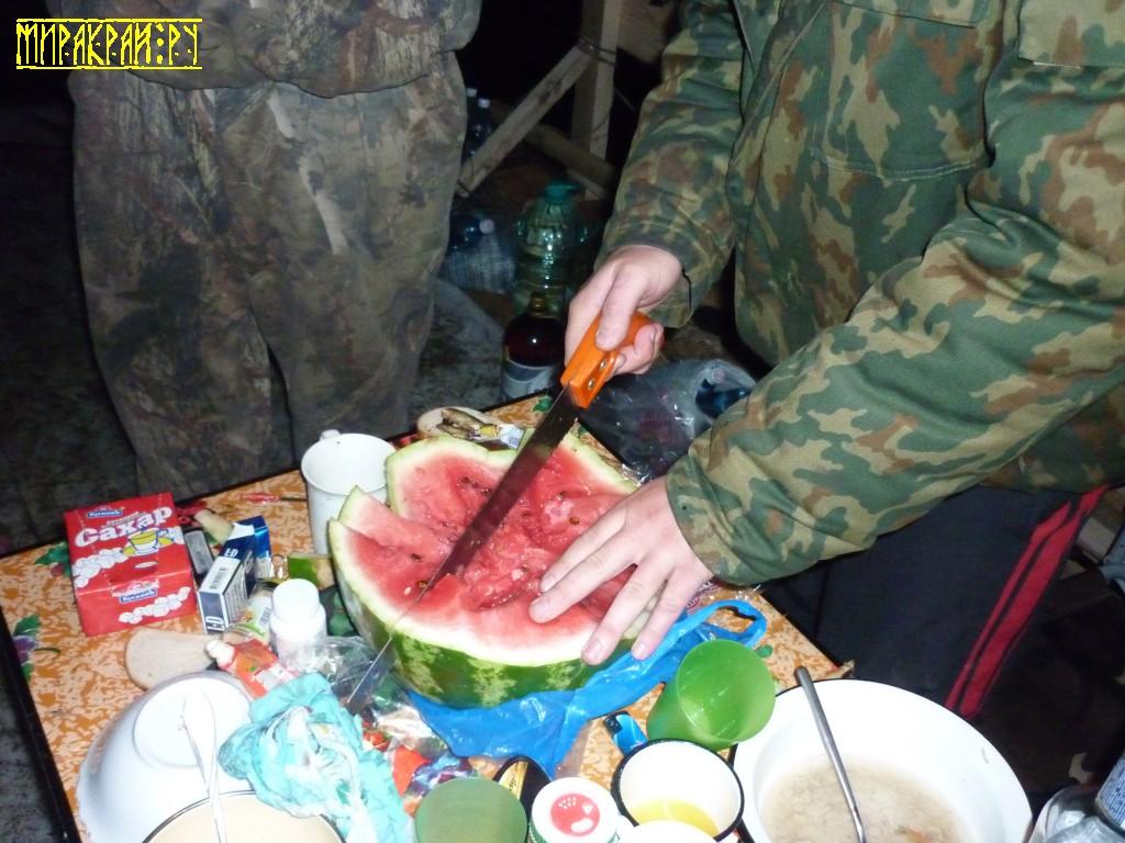 арбуз, ножовка, сплав